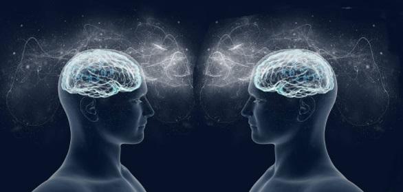 Neuroni specchio implicazioni per la psicoterapia - Neuroni specchio empatia ...